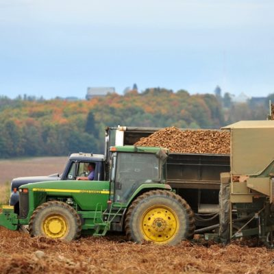 photo of tractors trucks harvester potatoes